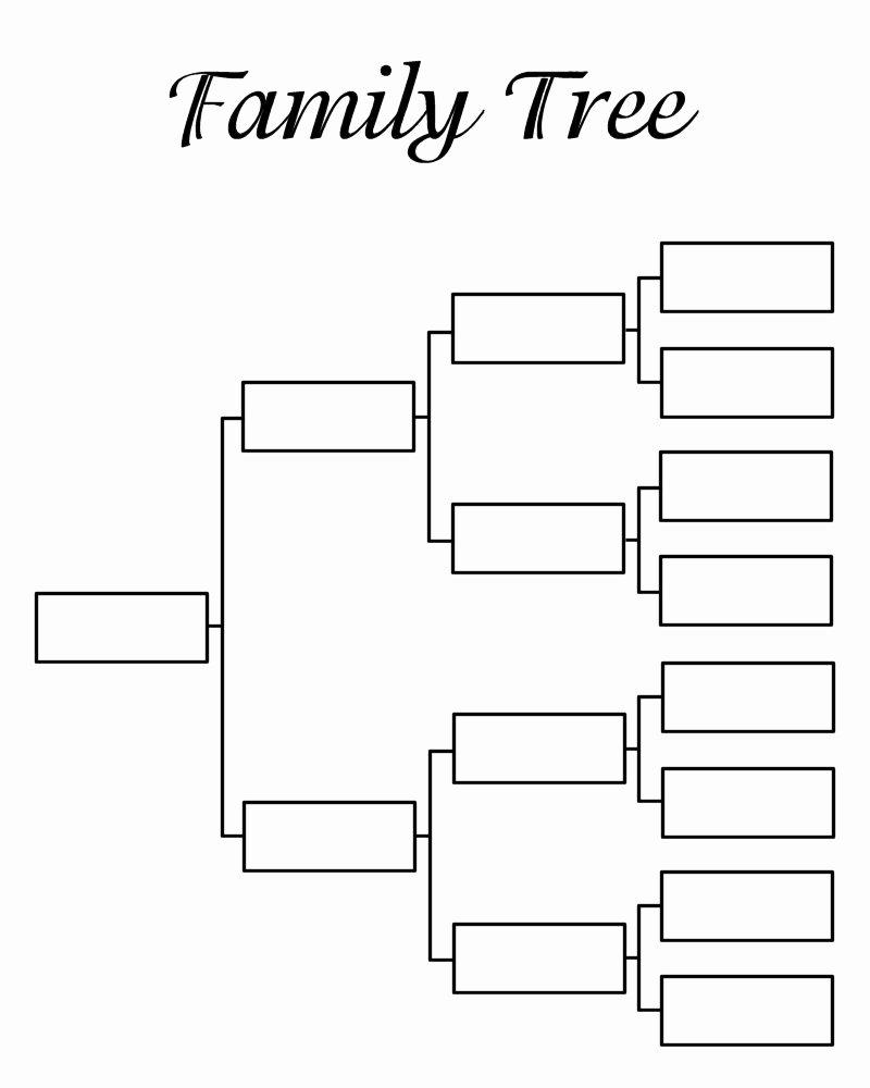 Free Family Tree Templates Fresh Blank Family Tree Template