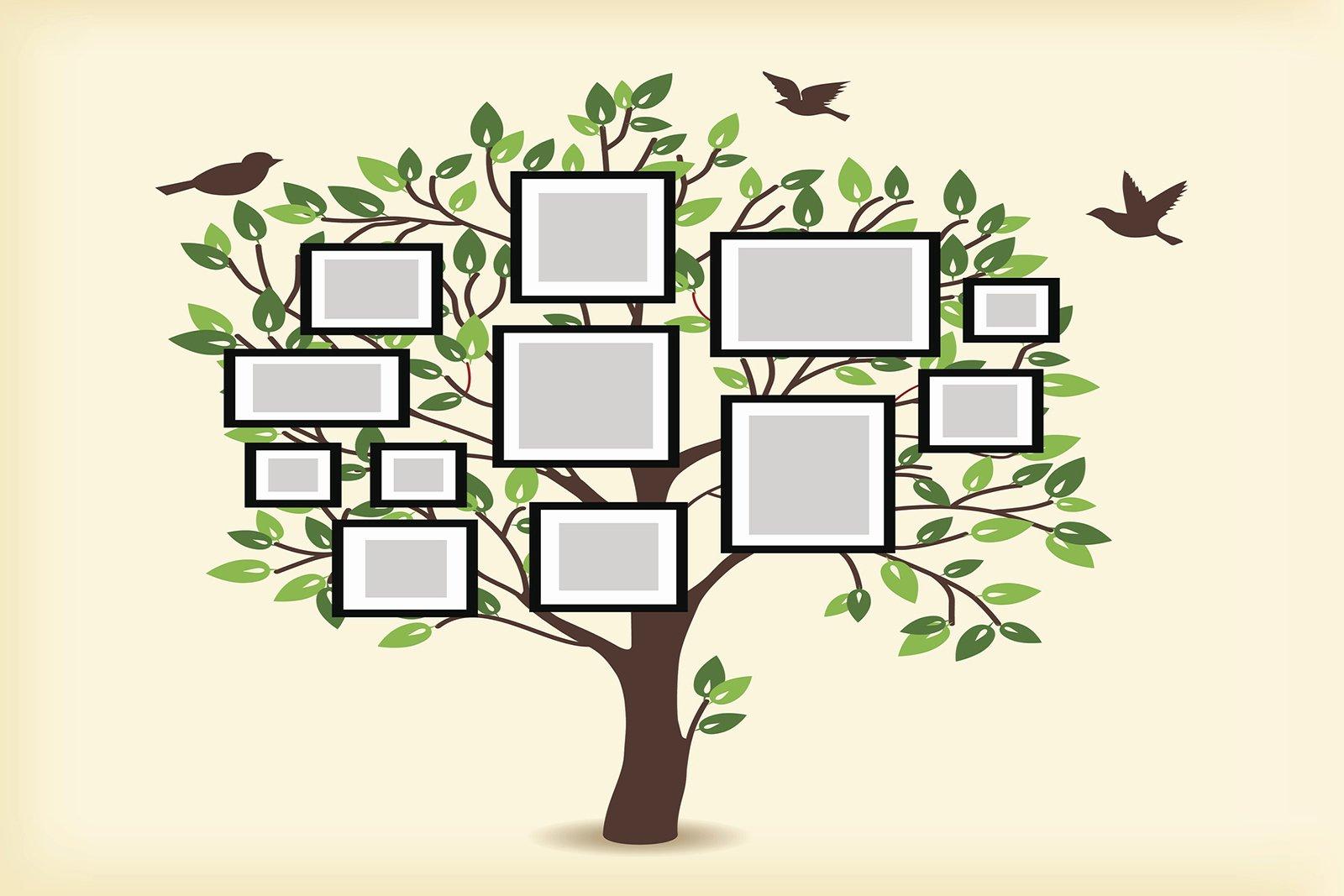 Free Family Tree Templates Fresh Draw A Family Tree
