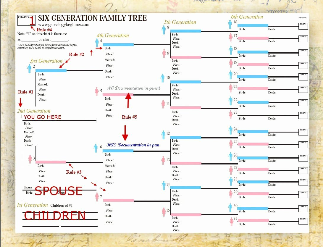 Free Family Tree Templates New Use Smartdraw S Included Family Tree Templates to Easily