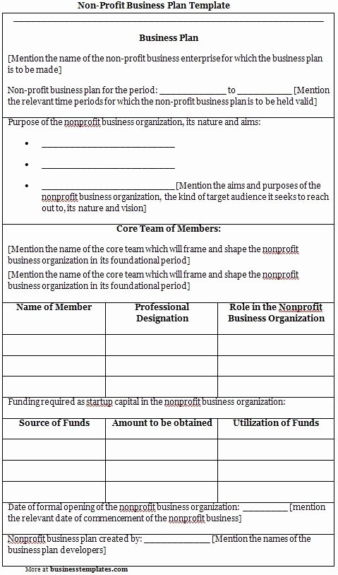 Free Nonprofit Business Plan Template Awesome Free Non Profit Business Plan Template