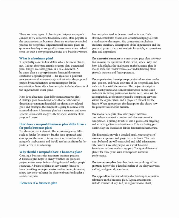 Free Nonprofit Business Plan Template Inspirational Non Profit Business Plan 14 Pdf Word Documents