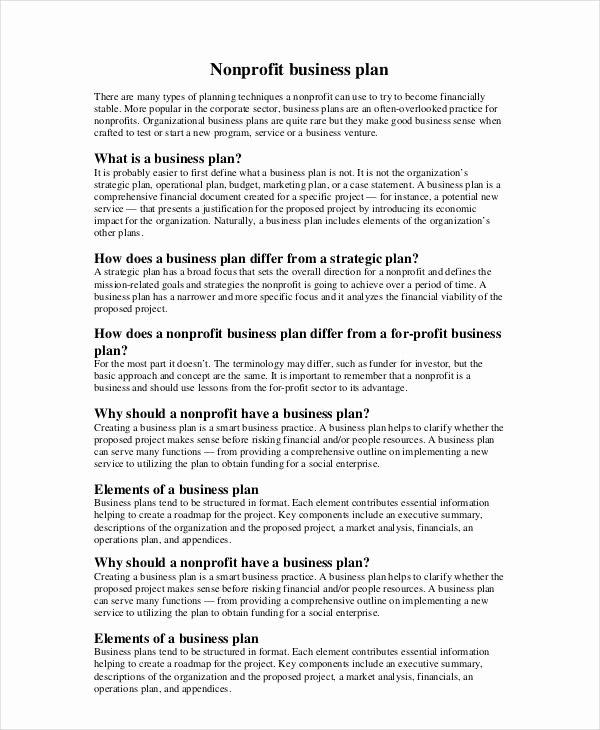 Free Nonprofit Business Plan Template New Non Profit Business Plan 14 Pdf Word Documents