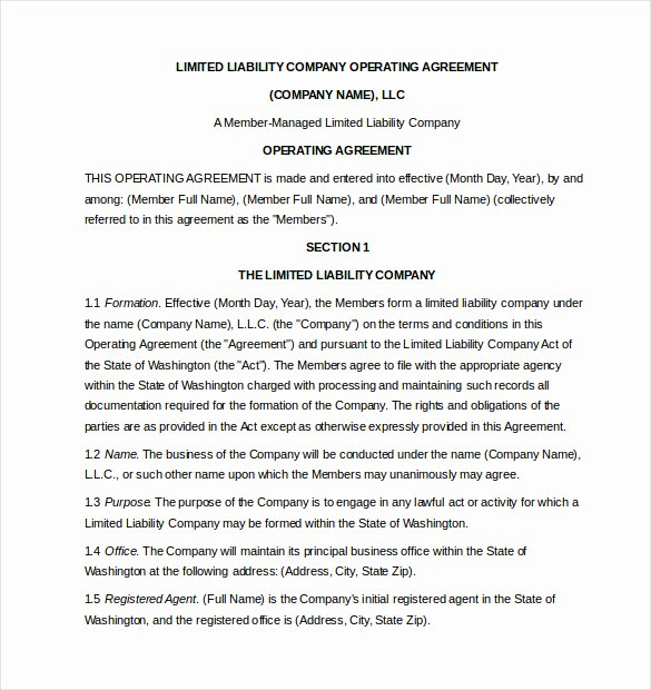 Free Operating Agreement Template Beautiful 9 Important Business Documents You Need to Have