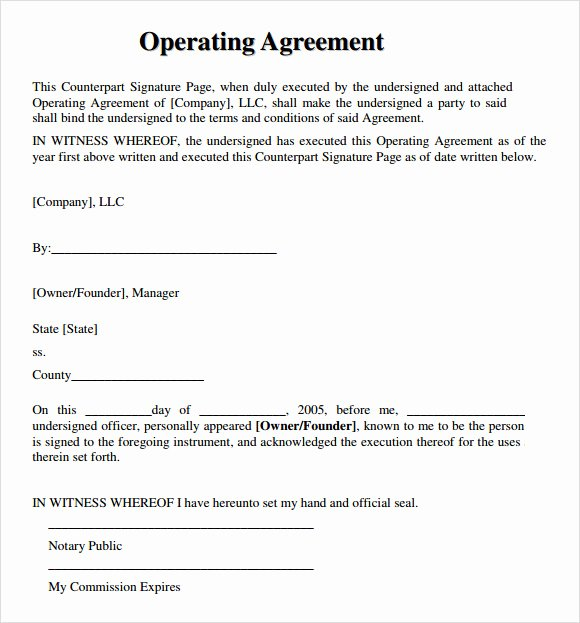 Free Operating Agreement Template Best Of Free 10 Sample Llc Operating Agreement Templates In