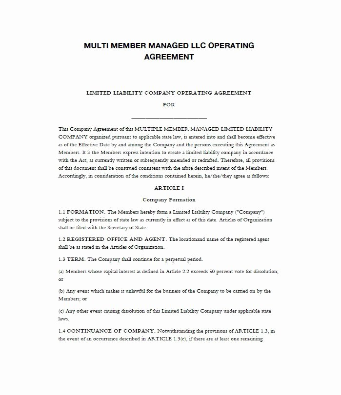 Free Operating Agreement Template Lovely 30 Professional Llc Operating Agreement Templates