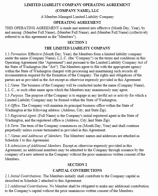 Free Operating Agreement Template Unique 13 Free Sample Operating Agreement Templates Printable