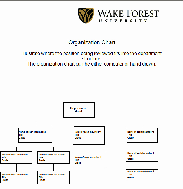 Free organizational Chart Template Word Best Of 41 Free organization Chart Templates In Word Excel Pdf