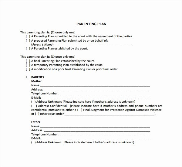 Free Parenting Plan Template Lovely Sample Parenting Plan Template 8 Free Documents In Pdf