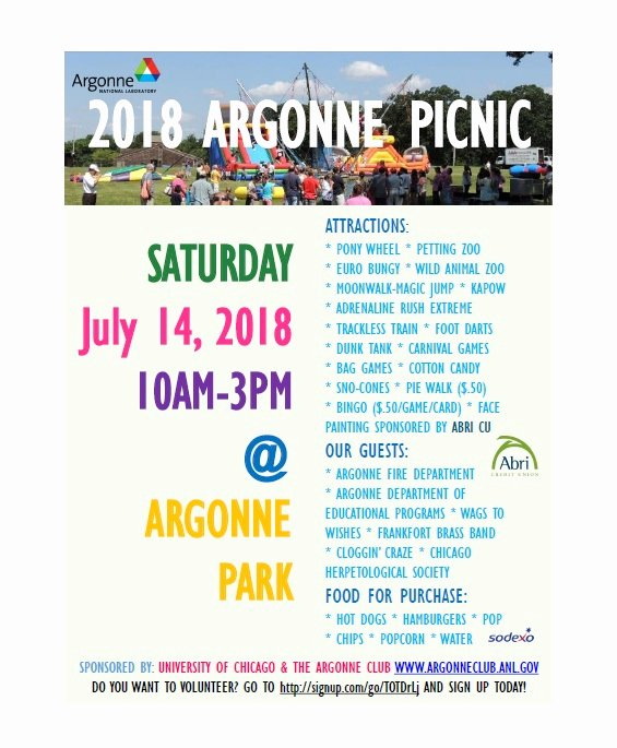 Free Picnic Flyer Template New 45 Awesome Picnic Flyer Templates Free Download