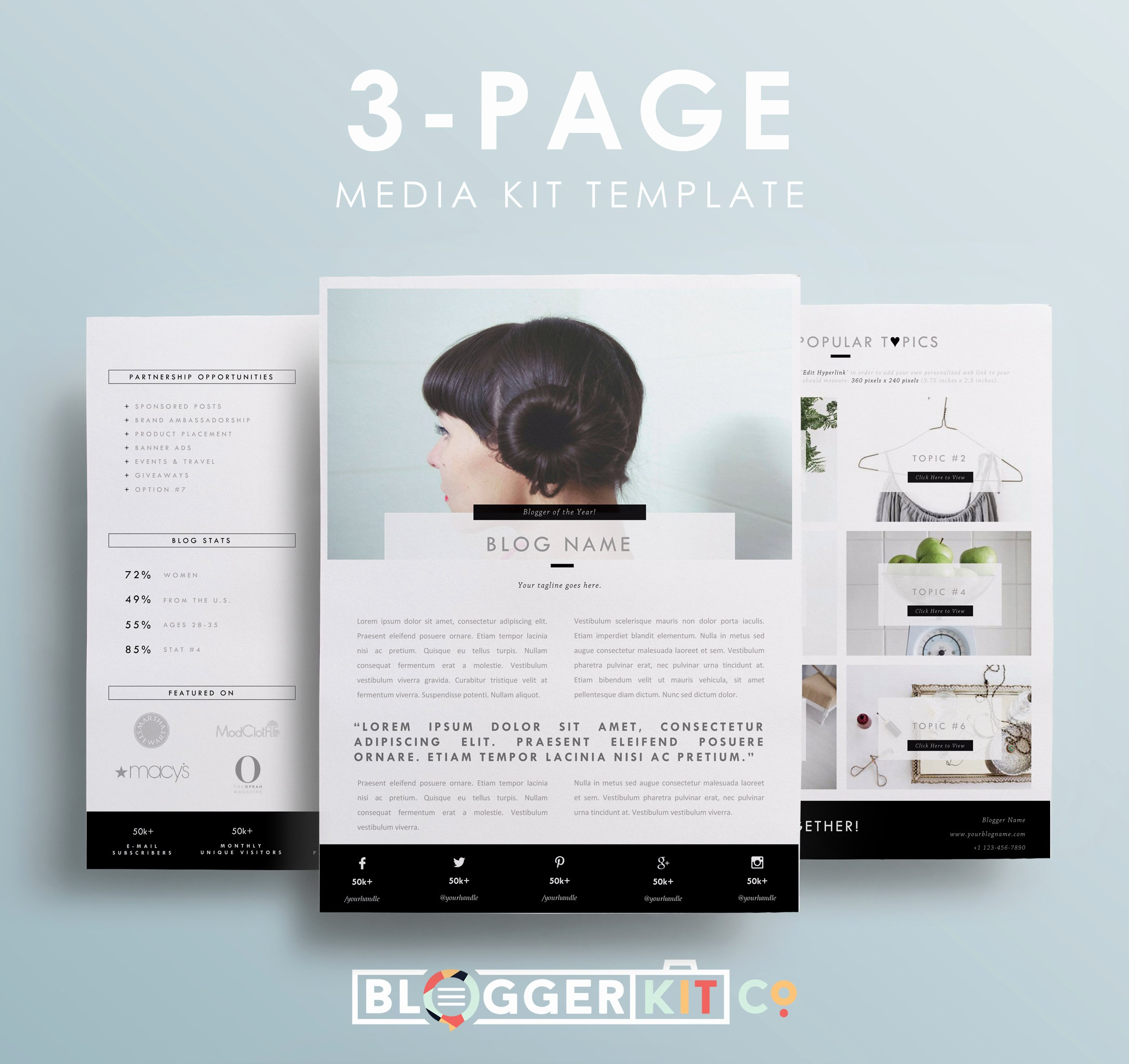 Free Press Kit Template Best Of My Darling Clementine 3 Page Media Kit Template