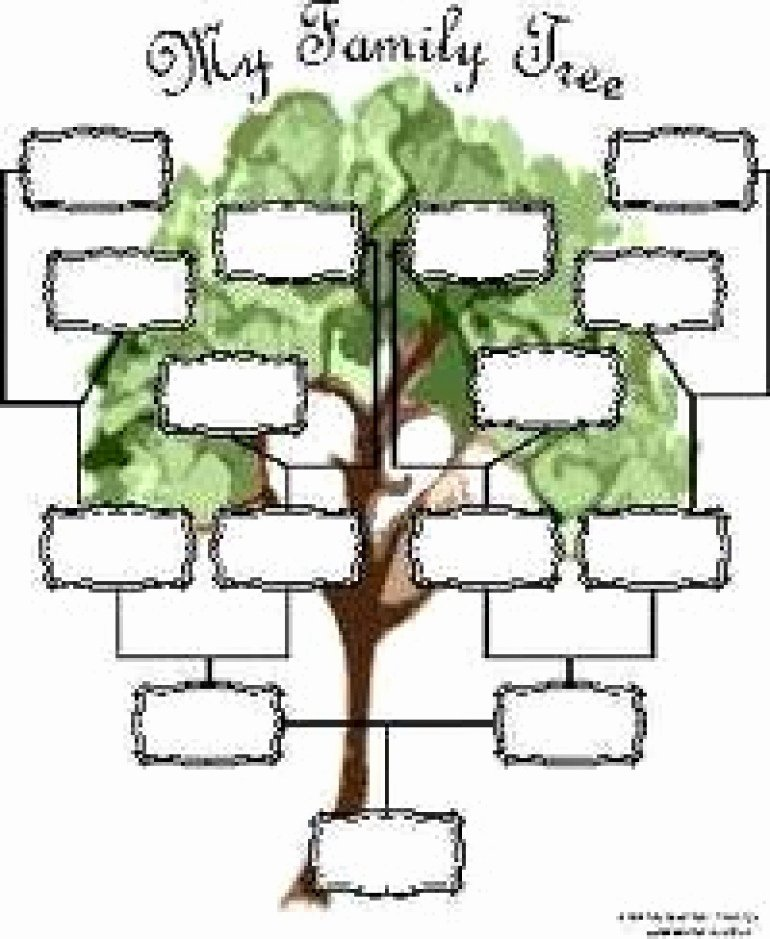 Free Printable Family Tree Template Beautiful Reaper List Activity Sections Family Genealogy