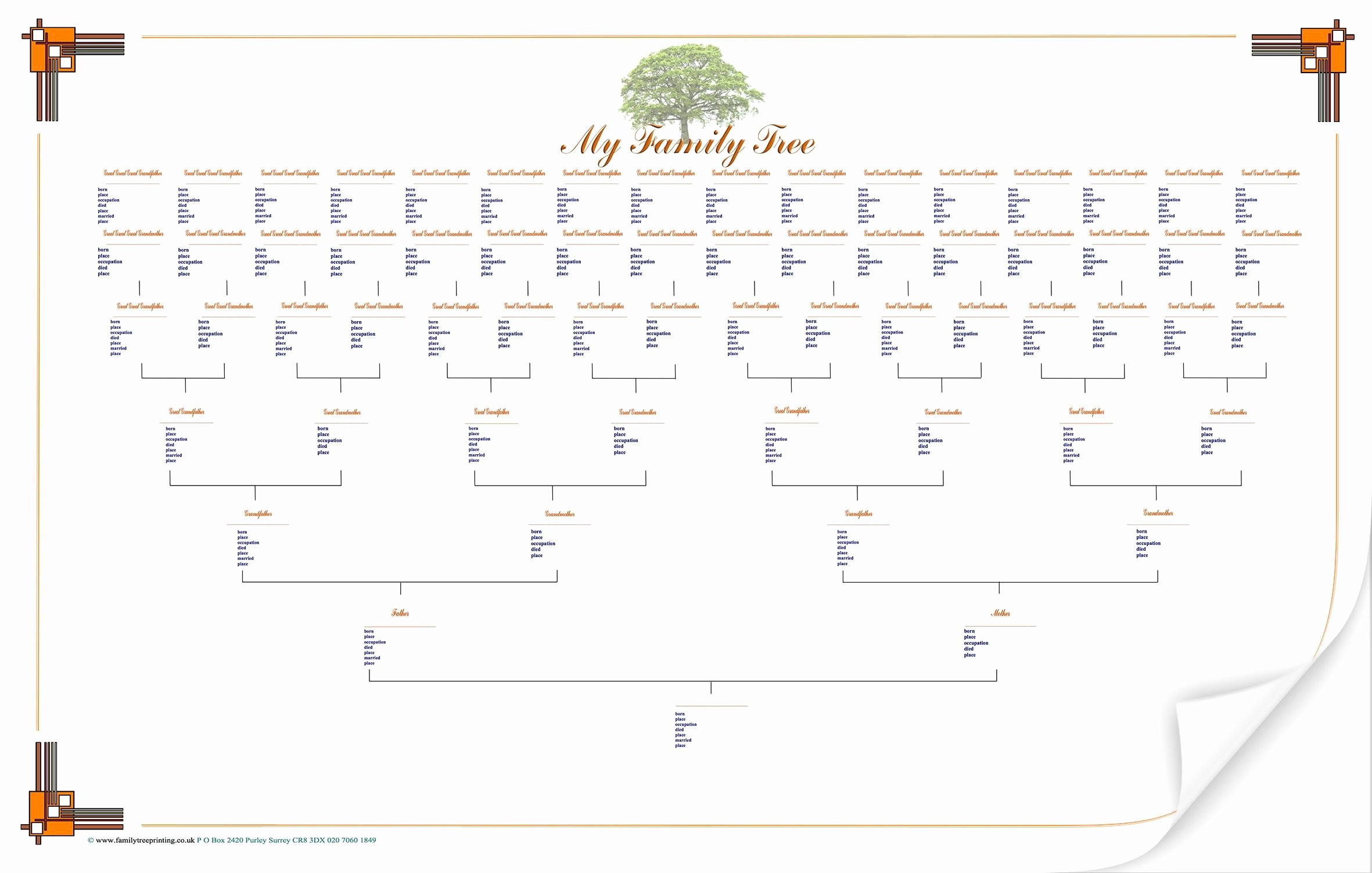 Free Printable Family Tree Template New Blank Family Tree Chart Geneology