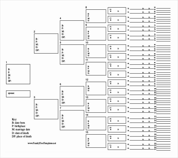 Free Printable Family Tree Template Unique Family Tree Template 26 Free Printable Word Excel Pdf