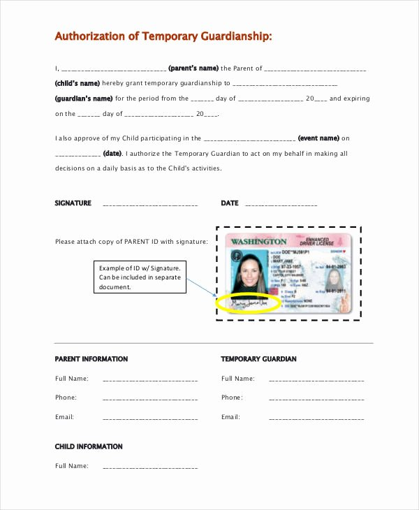 Free Temporary Guardianship form Template Fresh Template Gallery Page 3