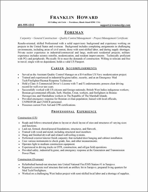 Functional Resume Template Free Lovely Latest Resume format November 2014