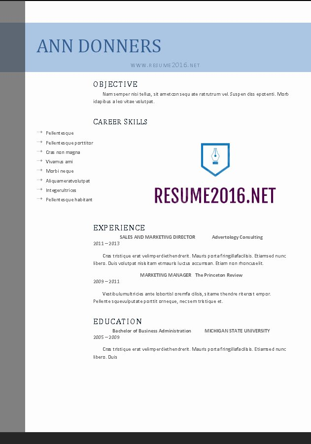 Functional Resume Template Word Luxury Word Resume Templates 2016