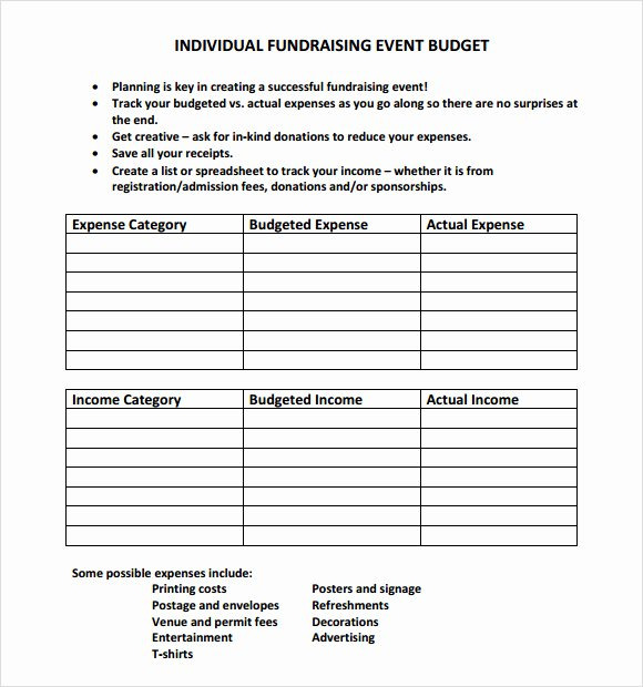 Fundraising Plan Template Excel Unique Best S Of Fundraiser Bud Template Fundraising