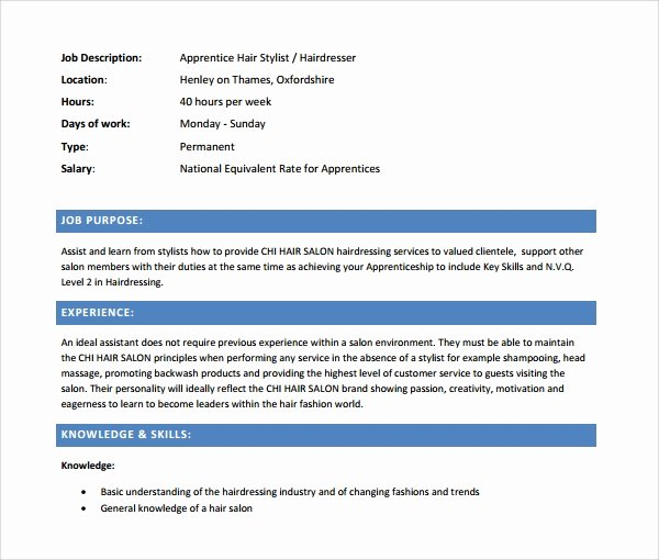 Hair Stylist Resume Templates Lovely Sample Cv 26 Documents In Pdf Word