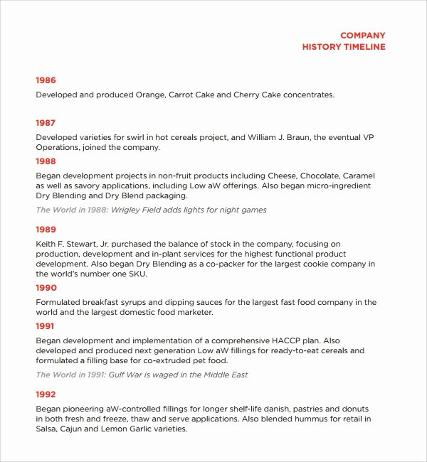 History Timeline Template Word Beautiful Sample Pany History Template 7 Free Documents