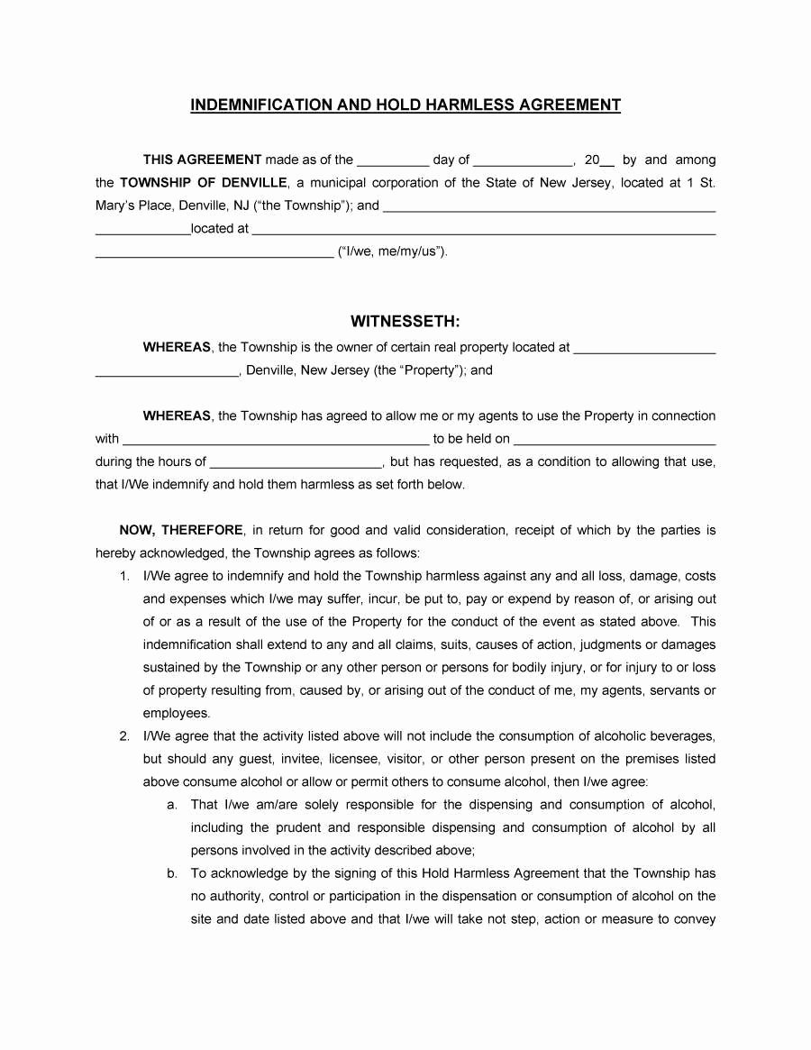 Hold Harmless Letter Template Unique Free Indemnity Agreement form Ideal Indemnity Letter