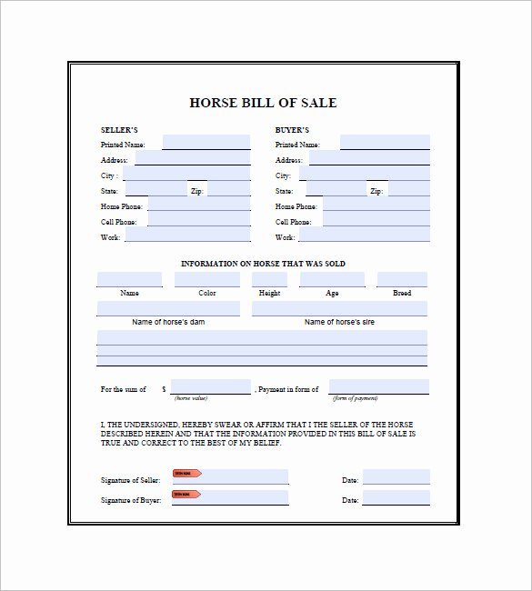 Horse Bill Of Sale Template Beautiful Horse Bill Of Sale 9 Free Word Excel Pdf format