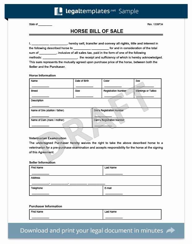 Horse Bill Of Sale Template Best Of Create A Firearm Bill Of Sale form