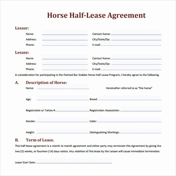 Horse Lease Agreement Template Best Of Sample Horse Lease Agreement 7 Documents In Pdf