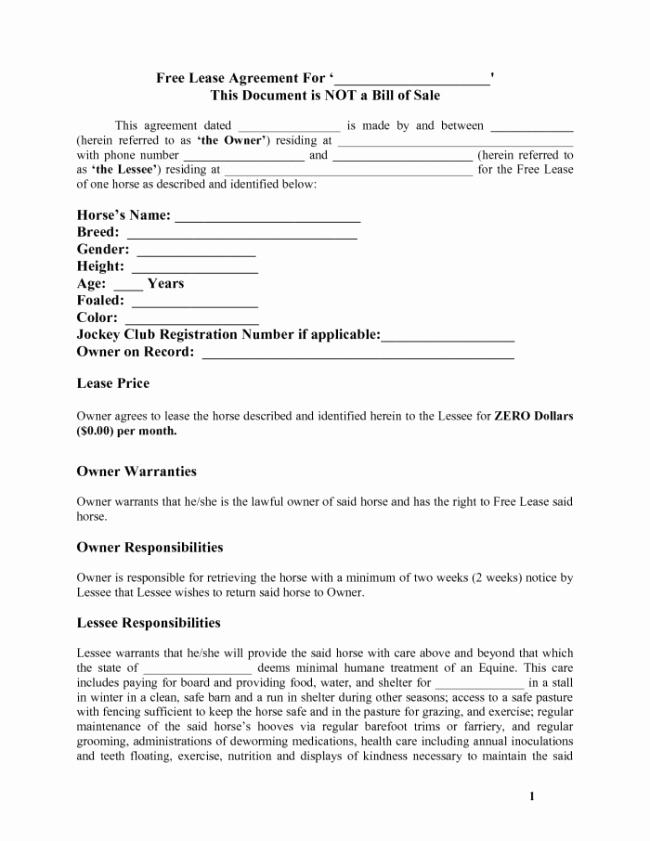 Horse Lease Agreement Template Elegant Free Download Lease Agreement Template Example with Blank