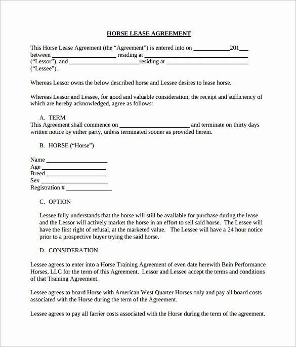 Horse Lease Agreement Template Elegant Sample Horse Lease Agreement 7 Documents In Pdf