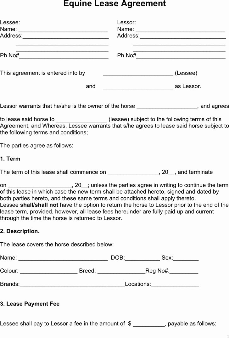 Horse Lease Agreement Template Fresh Horse Lease Agreement