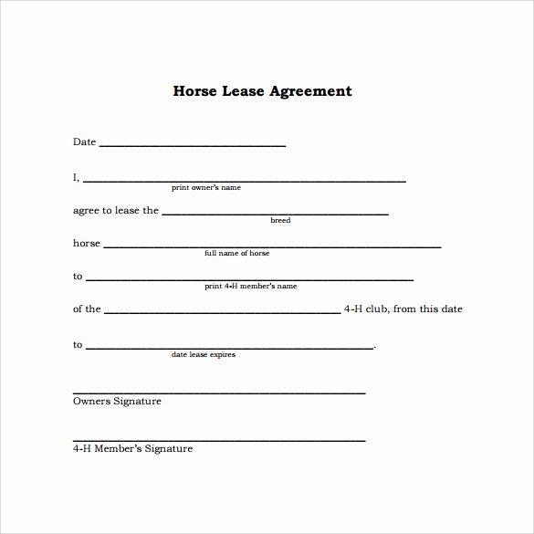 Horse Lease Agreement Template Fresh Sample Horse Lease Agreement 9 Free Documents In Pdf Word