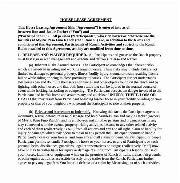 Horse Lease Agreement Template Luxury Horse Lease Agreement 10 Download Free Documents In Pdf