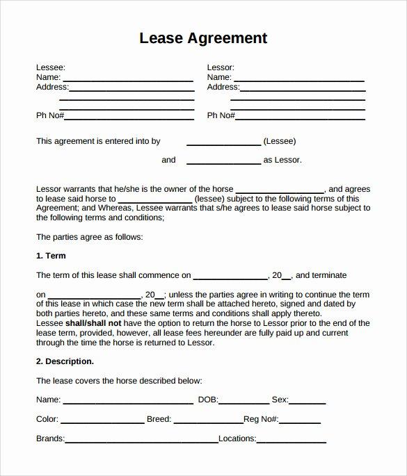 Horse Lease Agreement Template Unique Sample Horse Lease Agreement 9 Free Documents In Pdf Word