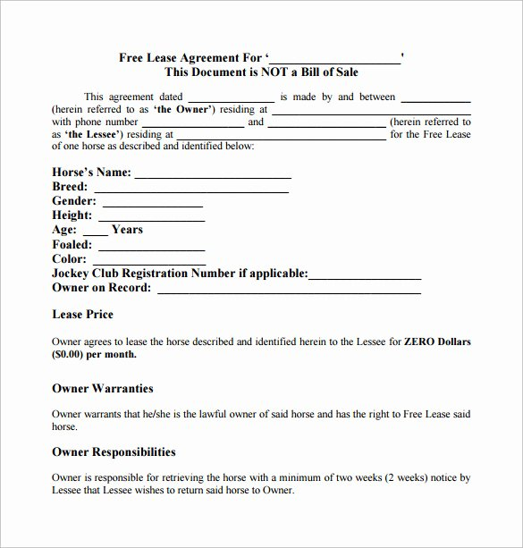 Horse Lease Agreement Templates Elegant Sample Horse Lease Agreement 7 Documents In Pdf