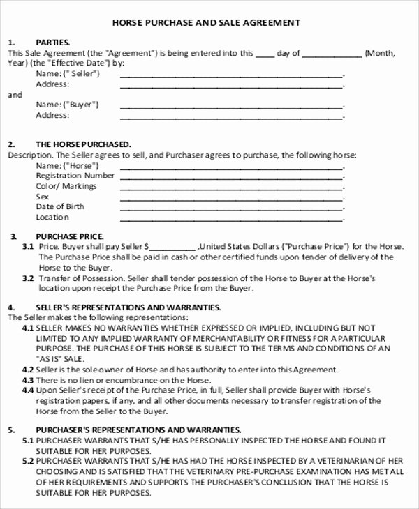 Horse Lease Agreement Templates Lovely Sample Horse Sales Contract 5 Examples In Word Pdf