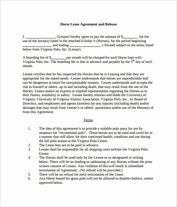 Horse Lease Agreement Templates Luxury Sample Horse Lease Agreement 7 Documents In Pdf