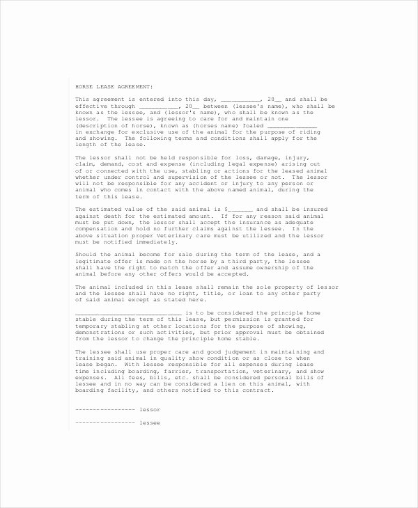 Horse Lease Agreement Templates New 13 Lease Agreement Templates Word Pdf Pages