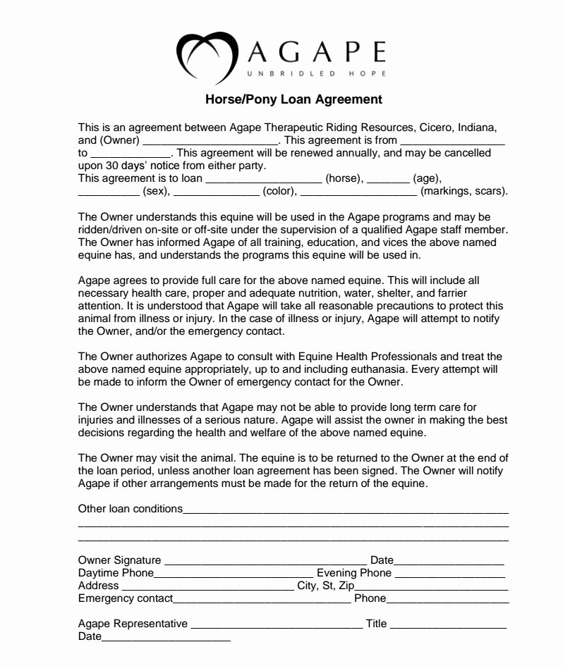 "Horse Lease Agreement Templates Unique ""so You Think You Want to Be A therapeutic Riding Horse"