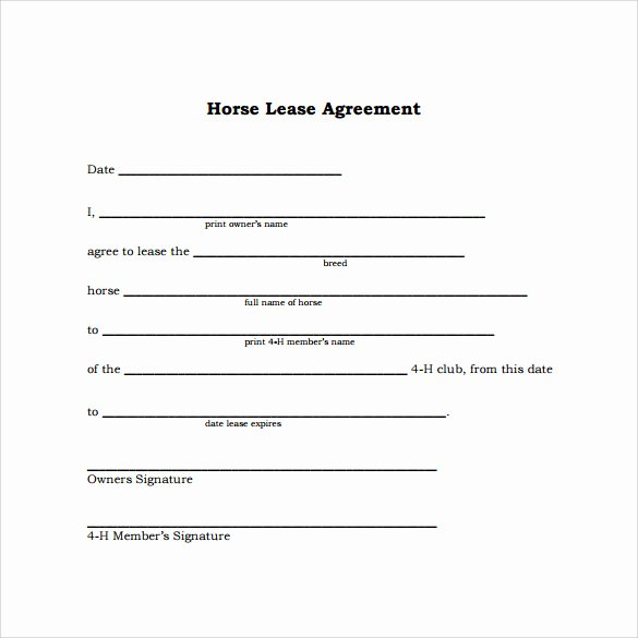 Horse Lease Agreements Template Beautiful Sample Horse Lease Agreement 9 Free Documents In Pdf Word
