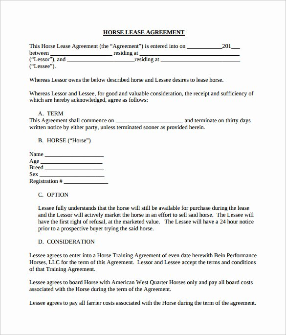 Horse Lease Agreements Template Fresh Sample Horse Lease Agreement 7 Documents In Pdf