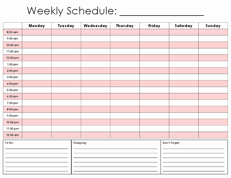 Hourly Schedule Template Word Elegant E Tiny Moment Hourly Calendar