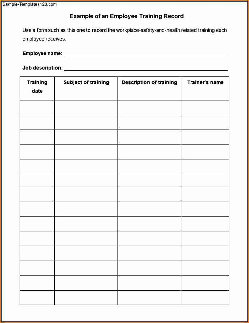 Individual Employee Training Plan Template Inspirational 5 Individual Payroll Record Template