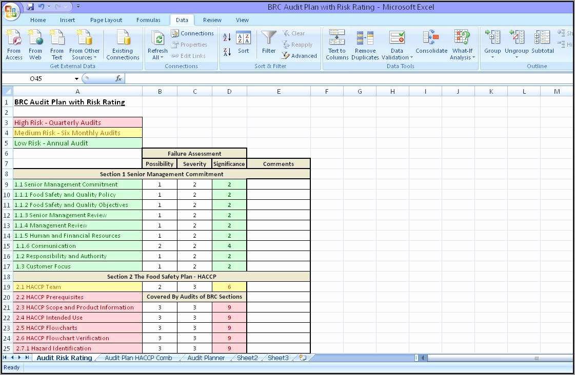 Internal Audit Programme Template Lovely Internal Audit Plan Template Free Templates Stock S