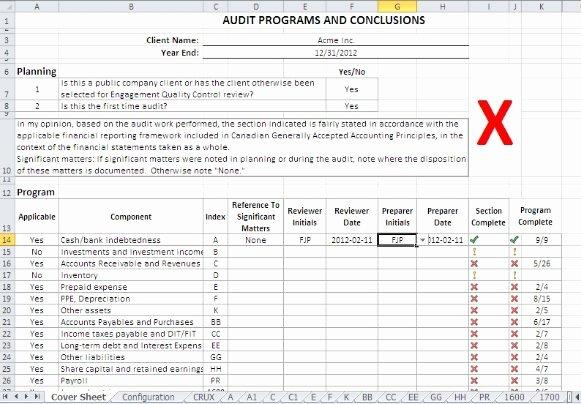 Internal Audit Programme Template Lovely Sample Audit forms