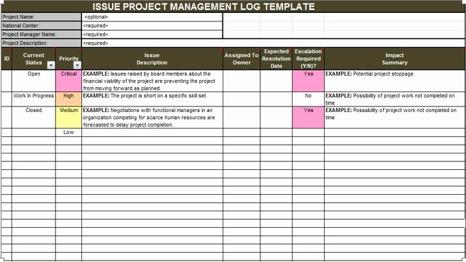Issue Log Template Excel Beautiful Download issue Project Management Templates