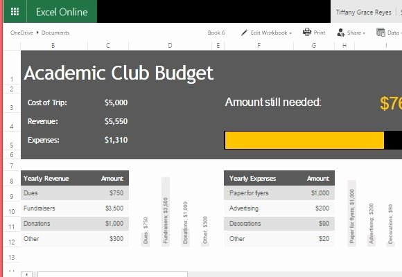 It Budget Template Excel Lovely Academic Club Bud Template for Excel