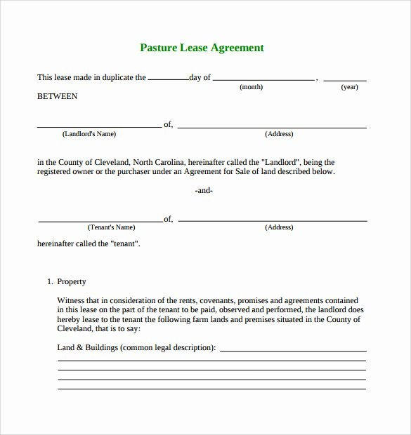 Land Lease Agreement Template Beautiful Pasture Lease Agreement Template 10 Download Free