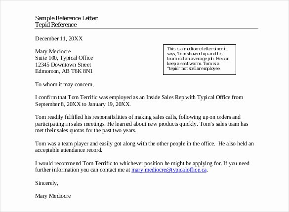 Letter Of Recomendation Templates Fresh 42 Reference Letter Templates Pdf Doc