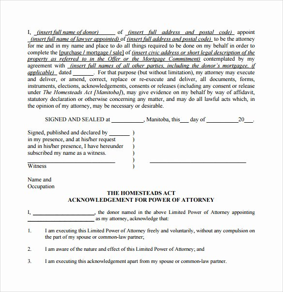 Limited Power Of attorney Template Lovely Sample Limited Power Of attorney forms 8 Free Documents