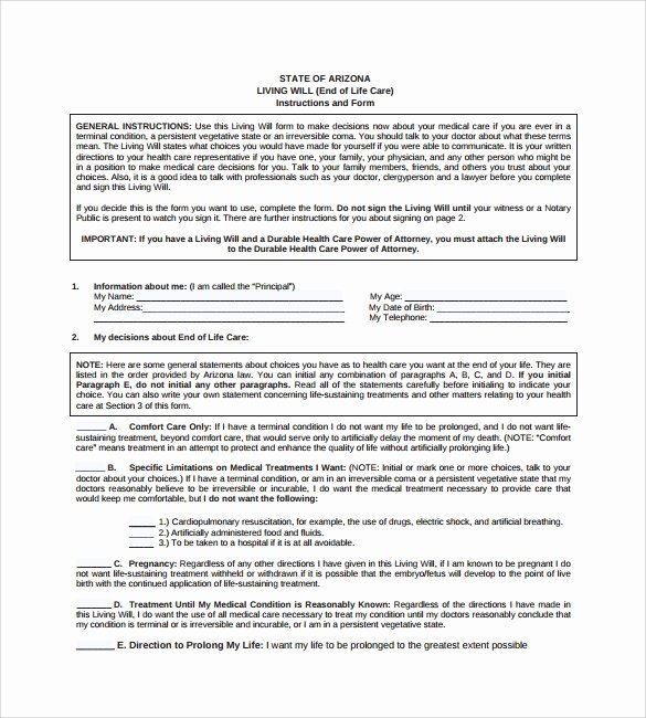 Living Will Template Pdf Lovely Free 8 Sample Living Wills In Pdf